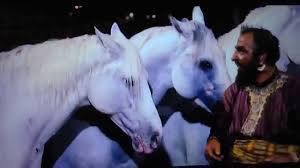 images-ben-hur-horses